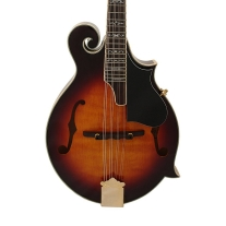 Gold Tone GM-70 Plus Mandolin