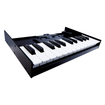 Roland Boutique Series K-25m 25-Note Velocity Sensitive Keyboard