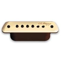 Lr Baggs m1 Soundhole Magnetic Pickup