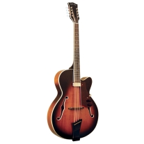 Gold Tone Mandocello Archtop in Sunburst with Case