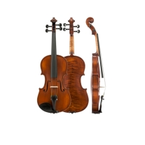 Amati Model 14 Intermediate 4/4 Violin Outfit