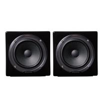 Avantone Passive Black MixCubes PB Pair