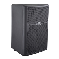 "Peavey PVXP10 10"" 2-Way Powered Speaker"