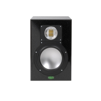 Unity Audio The Rock 2-Way Monitor