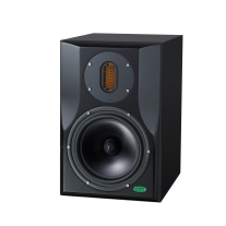 Unity Audio Superrock 2-Way Monitor