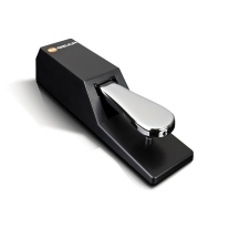 M Audio SUS2 Switchable Polarity PIANO-Style Sustain Pedal