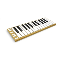 CME Xkey 25-Key MIDI Portable Mobile Musical Keyboard - Gold