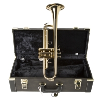 Yamaha YTR8310Z Bobby Shue Pro Trumpet with Case in Gold Lacquer