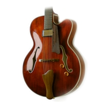 "Eastman AR503CE Single Cutaway 16"" Archtop Classic Finish Guitar w/ Case"