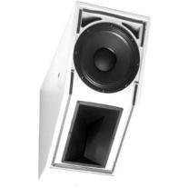 Electro Voice Evi15WH 15In 2 -Way Vari-Intense Speaker