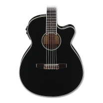 Ibanez AEG10NII Classical Acoustic Electric Guitar in Black