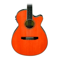 Ibanez AEG10NIITNG Nylon Acoustic Electric Guitar in Tangerine