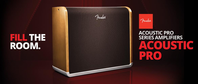 Fender Acoustic Pro Amp